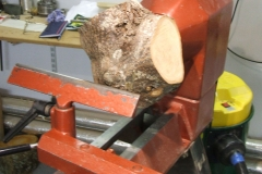 This was my blank mounted on the lathe ready to start, it was a piece of Lime from the crux of a branch.