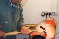 Here we have Mark Dale taking his first cuts on a natural edged bowl in Elm.