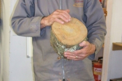 Here John is showing the end of a log with several drying shakes (cracks) in it, and explaining why they are there,